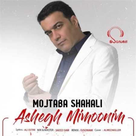 آهنگ جدید مجتبی شاه علی به نام عاشق میمونیم