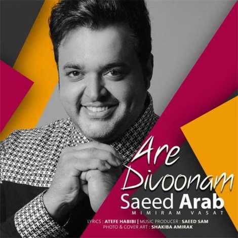 آهنگ جدید سعید عرب به نام آره دیوونم