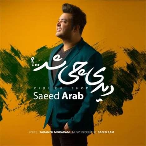 آهنگ جدید سعید عرب به نام دیدی چی شد