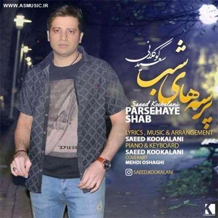 آهنگ جدید سعید کوکلانی به نام پرسه های شب